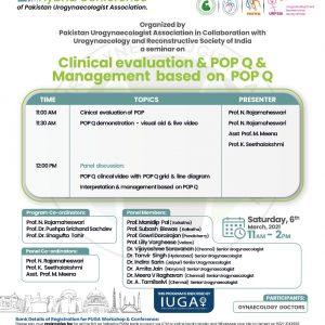 International Workshop on Clinical Evaluation & POP-Q & Management basted on POP-Q